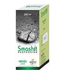 Smashit-Suspension